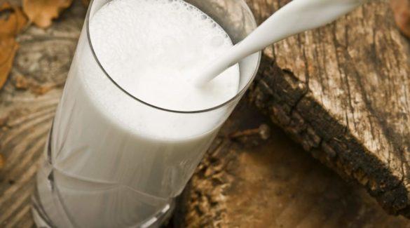 Можно ли пить молоко если у коровы лейкоз